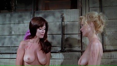 PHYLLIS DAVIS PAMELA COLLINS NUDE (1972) Only Boobs Scene